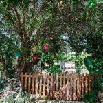 garden wagonwheel