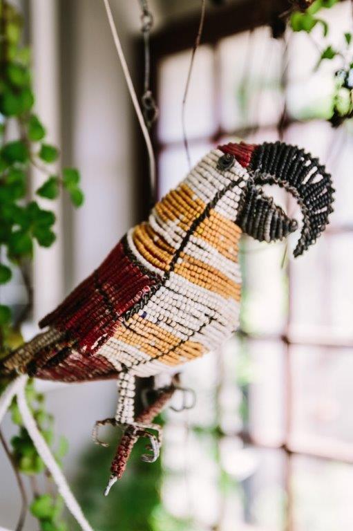 parrot in carport